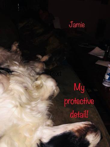 my protective detail day 161